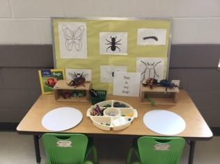 bug table